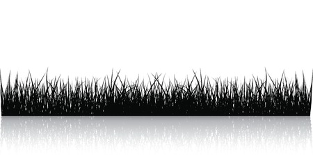 grass isolated: Black Vector Grass Isolated On White