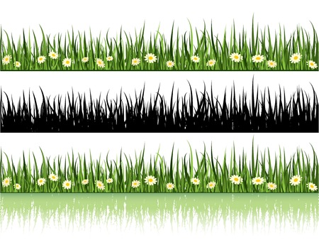 Grass and Flowers. Summer Time Vector. Stock Vector - 5088390