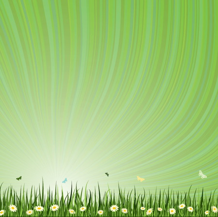 Green Summer Vector background. Grass Collection. Stock Vector - 5088385