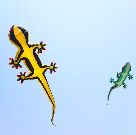 Reptile kites on the sky. Fun collection. Stock Photo - 6699954