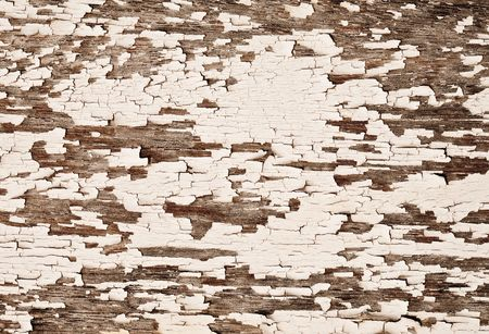 White painted old wooden texture photo