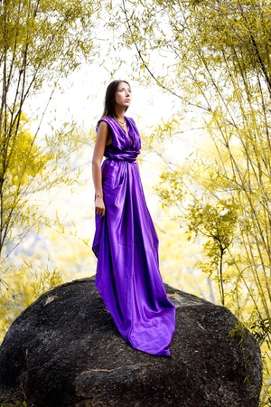 Beautiful Woman in lavender long dress  standing on a rock photo