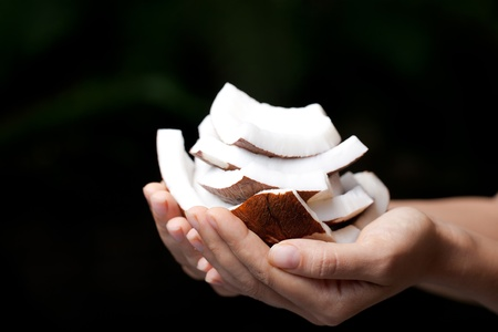 Coconut in hands. SPA Collection. photo