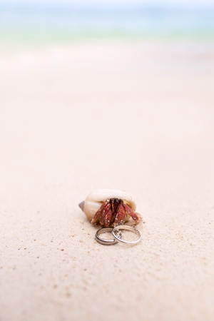 Hermit Crab and Wedding Rings on the Tropical Beach photo