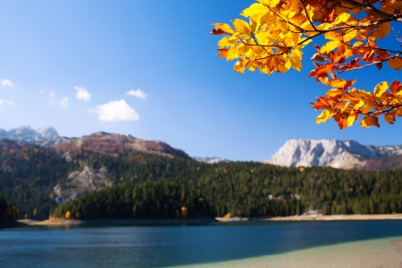 Rocky landscape with autumn tree at a lake in Montenegro photo