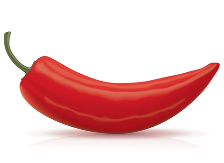 hot pepper: Vector Chili Pepper  Food Collection  Illustration