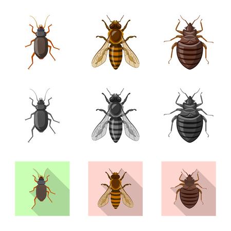 Vektordesign des Insekten- und Fliegensymbols. Satz Insekten- und Elementvorratvektorillustration.