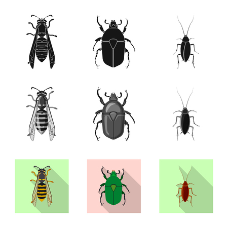 Vector illustration of insect and fly icon. Collection of insect and element stock symbol for web. Vektorové ilustrace