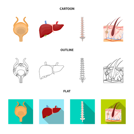 Isolated object of body and human sign. Set of body and medical vector icon for stock.