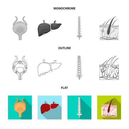 Objeto aislado de cuerpo y ser humano. Conjunto de icono de vector médico y corporal para stock.
