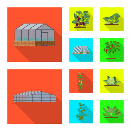Vector design of greenhouse and plant symbol. Collection of greenhouse and garden stock vector illustration. Ilustracja