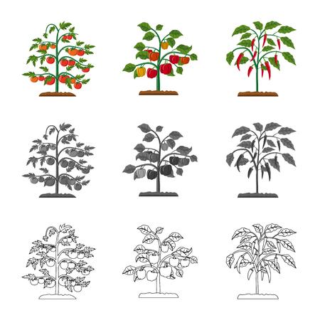 Oggetto isolato di serra e simbolo della pianta. Raccolta di serra e giardino stock illustrazione vettoriale.