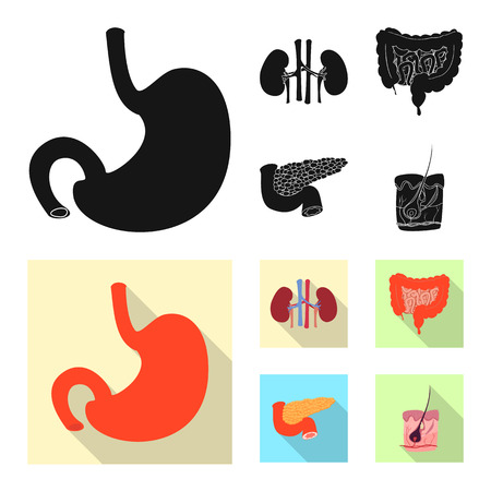 Isolated object of body and human icon. Set of body and medical stock vector illustration. Stock Illustratie