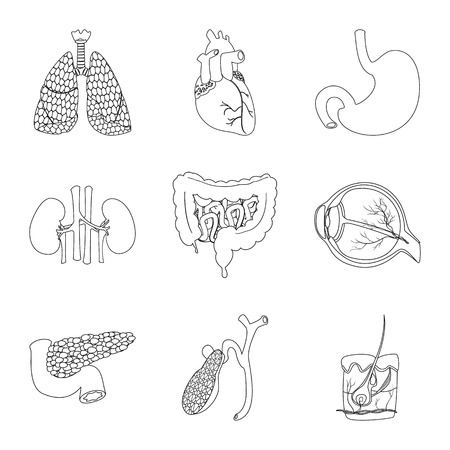 Vector illustration of body and human sign. Collection of body and medical stock symbol for web.