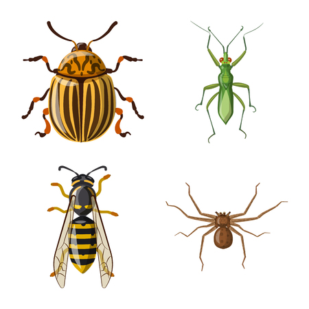 Vector design of insect and fly logo. Collection of insect and element stock symbol for web. Illustration