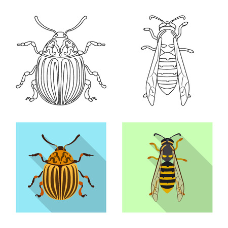 Vector illustration of insect and fly logo. Set of insect and element stock symbol for web.