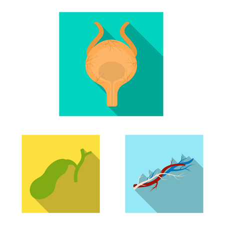 Vector design of body and human sign. Set of body and medical vector icon for stock.