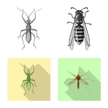 Vector design of insect and fly icon. Set of insect and element vector icon for stock.