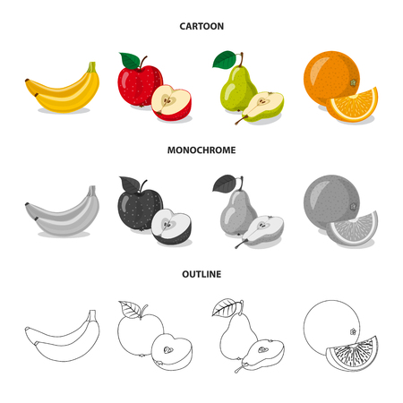 Vector design of vegetable and fruit icon. Collection of vegetable and vegetarian stock symbol for web.