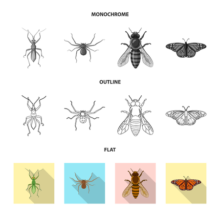 Isolated object of insect and fly icon. Set of insect and element stock symbol for web.