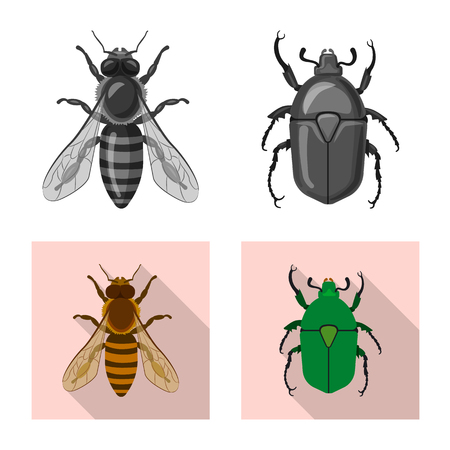 Isolated object of insect and fly symbol. Set of insect and element stock symbol for web.