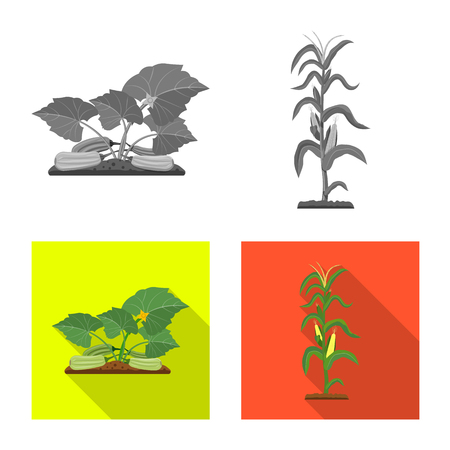 Isolated object of greenhouse and plant symbol. Set of greenhouse and garden stock symbol for web.