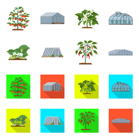 Vector illustration of greenhouse and plant icon. Collection of greenhouse and garden stock vector illustration.