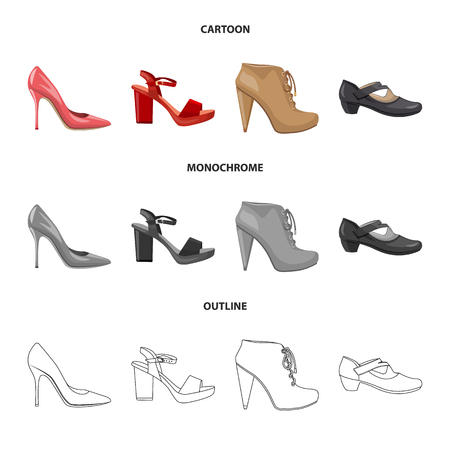 Vector illustration of footwear and woman sign. Set of footwear and foot stock symbol for web.