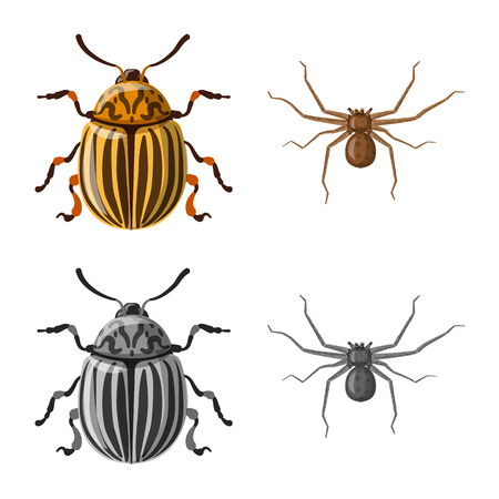 Vector illustration of insect and fly icon. Collection of insect and element vector icon for stock. Banque d'images - 110035726
