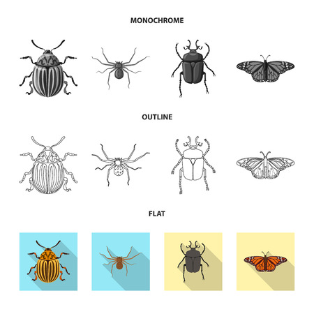 Isolated object of insect and fly logo. Set of insect and element stock symbol for web. Illustration