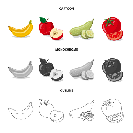 Vector design of vegetable and fruit icon. Set of vegetable and vegetarian stock symbol for web.