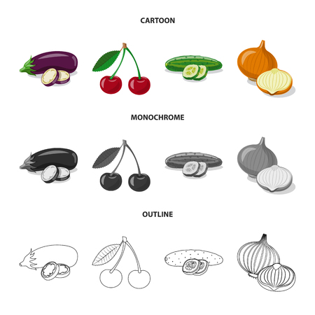 Vector illustration of vegetable and fruit icon. Collection of vegetable and vegetarian vector icon for stock.
