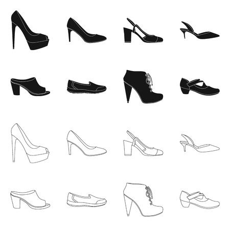 Vector illustration of footwear and woman sign. Set of footwear and foot stock vector illustration.