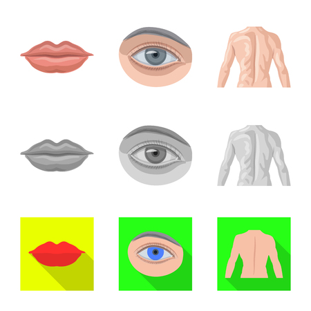 Isolated object of human and part symbol. Collection of human and woman stock symbol for web. Ilustrace