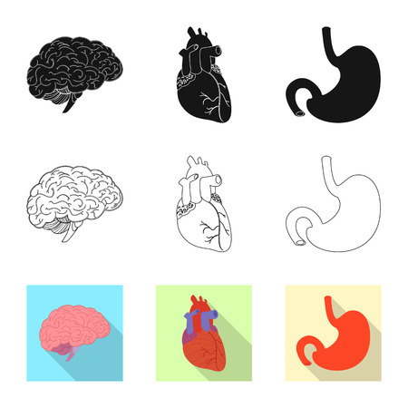 Isolated object of body and human icon. Collection of body and medical vector icon for stock. Vector Illustration