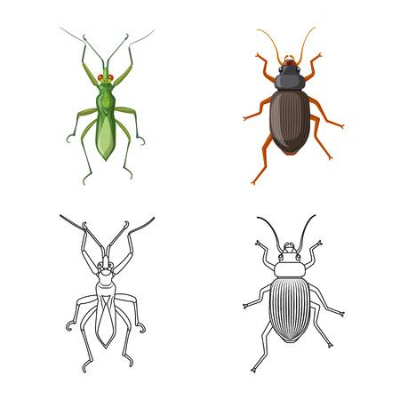 Vektor-Illustration von Insekten- und Fliegensymbol. Satz von Insekten- und Elementaktiensymbolen für das Web. Vektorgrafik