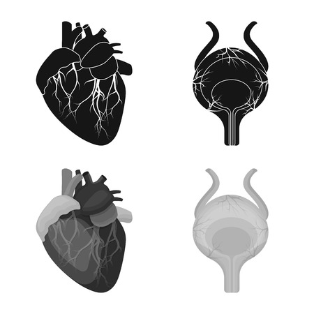 Isolated object of body and human icon. Set of body and medical stock vector illustration. 일러스트