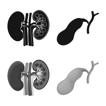 Vector design of body and human sign. Collection of body and medical vector icon for stock.