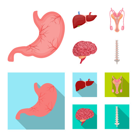 Vector design of body and human icon. Collection of body and medical vector icon for stock. Ilustrace