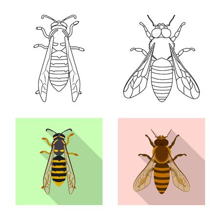 Vektordesign des Insekten- und Fliegenlogos. Satz Insekten- und Elementvorratvektorillustration.
