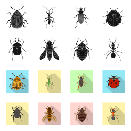 Isolated object of insect and fly icon. Set of insect and element stock vector illustration. Vectores