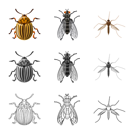 Vector illustration of insect and fly icon. Collection of insect and element vector icon for stock. Banque d'images - 110333732
