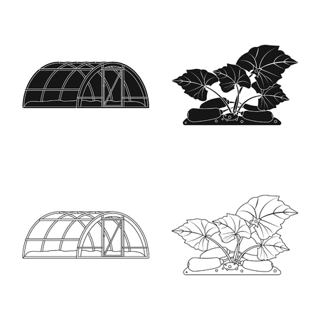 Vector illustration of greenhouse and plant symbol. Collection of greenhouse and garden stock symbol for web. Ilustracja