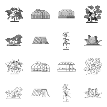 Vector illustration of greenhouse and plant sign. Set of greenhouse and garden vector icon for stock.