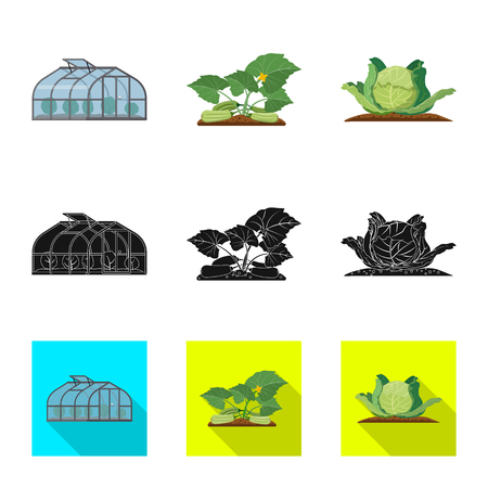 Isolated object of greenhouse and plant symbol. Set of greenhouse and garden vector icon for stock. Ilustracja