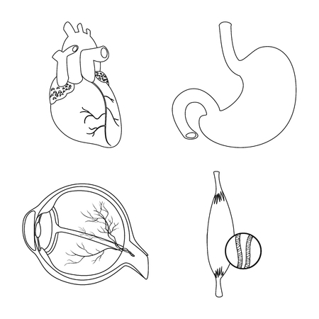 Isolated object of body and human sign. Collection of body and medical vector icon for stock.