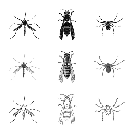 Vector design of insect and fly logo. Set of insect and element stock symbol for web.