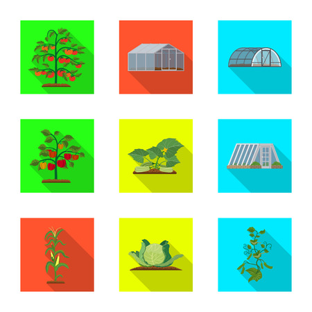Vector design of greenhouse and plant symbol. Set of greenhouse and garden stock vector illustration. Illustration