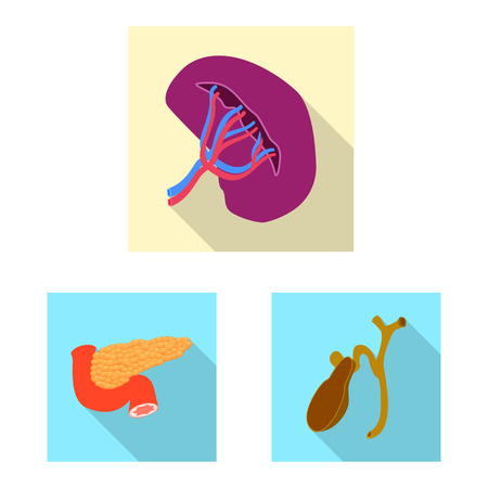 Isolated object of body and human sign. Collection of body and medical stock symbol for web.
