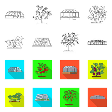 Vector illustration of greenhouse and plant symbol. Collection of greenhouse and garden stock vector illustration. Illustration